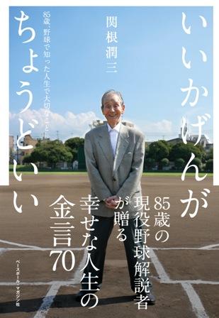 いいかげんがちょうどいい―85歳、野球で知った人生で大切なこと