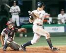 昨年韓国で行われた第25回18歳以下世界野球選手権